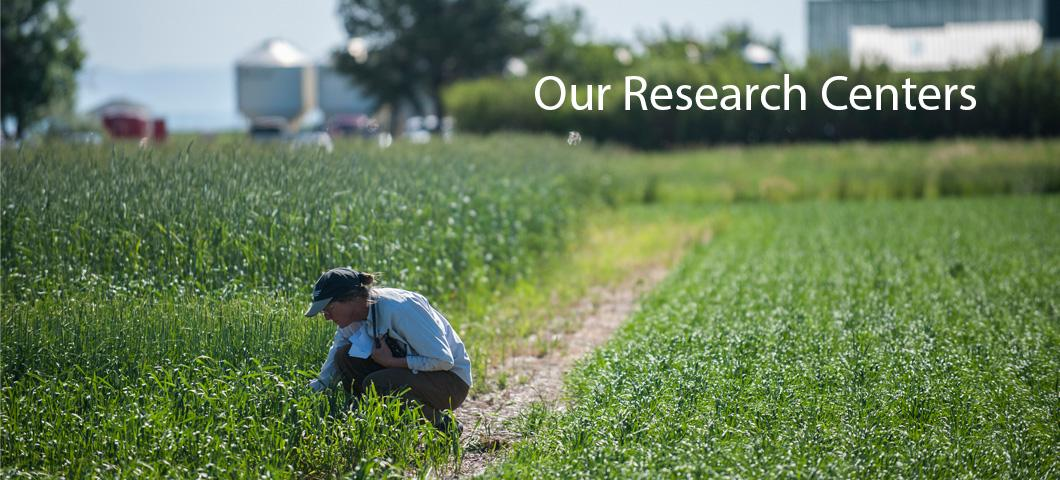 A link to the seven statewide research centers across Montana.