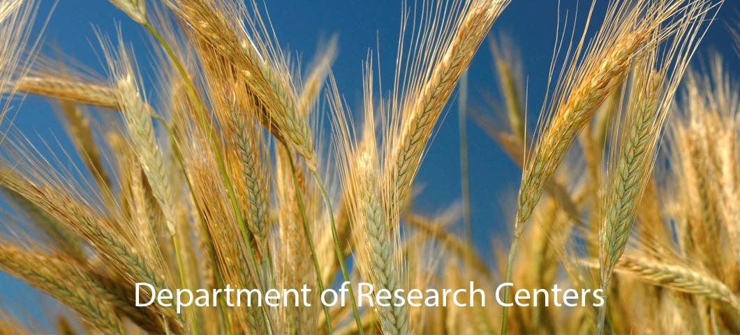 A link to information about the Department of Research Centers.