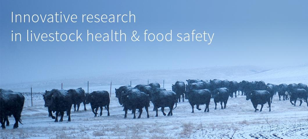 Innovative research in livestock health & food safety