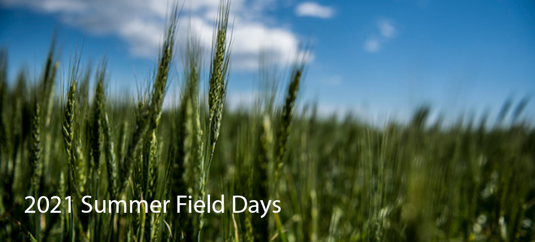 A link to the list of summer field days at the research centers in Montana.